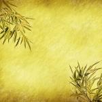Цветы019