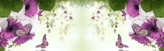 Цветы507s
