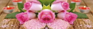 Цветы493s