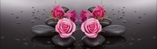 Цветы516s