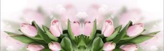 Цветы522s