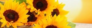 Цветы110s