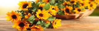 Цветы113s