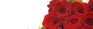 Цветы244s