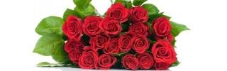 Цветы251s