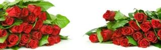 Цветы265s