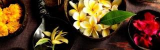 Цветы050s