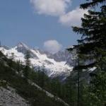 Природа036