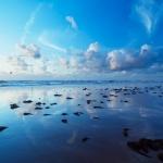Море019