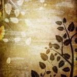 Фоны и текстуры212